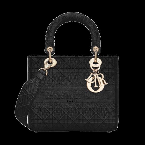 Dior Bag D Lite